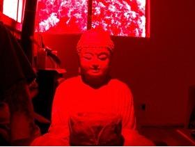 3D扫描的佛像